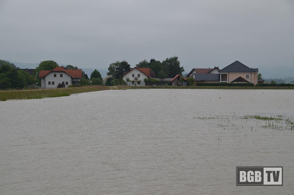 Hochwasser 2013 - Mettensdorf Grenze Baumgartenberg